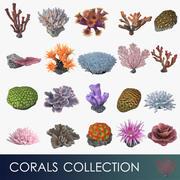 koraller samling 3d model