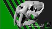 SaberTooth Tiger Skull [For 3D Print] 3d model