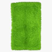 Mongolian fur rug green 3d model