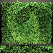 垂直园艺 3d model