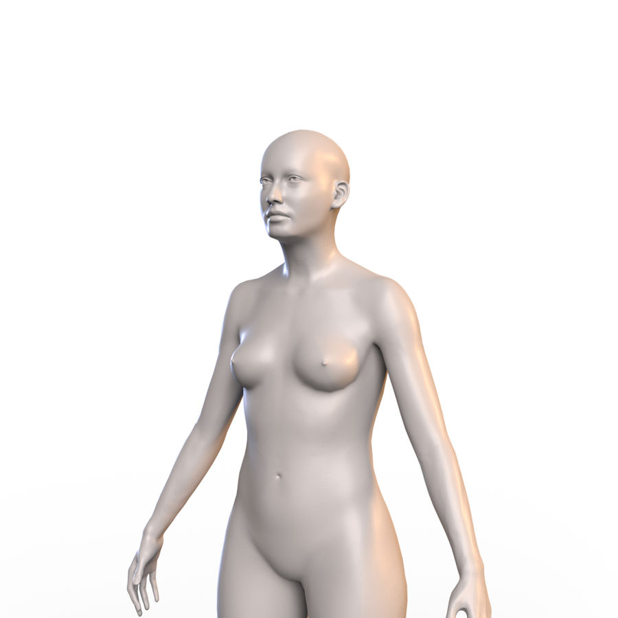 Basemesh corps femme royalty-free 3d model - Preview no. 3
