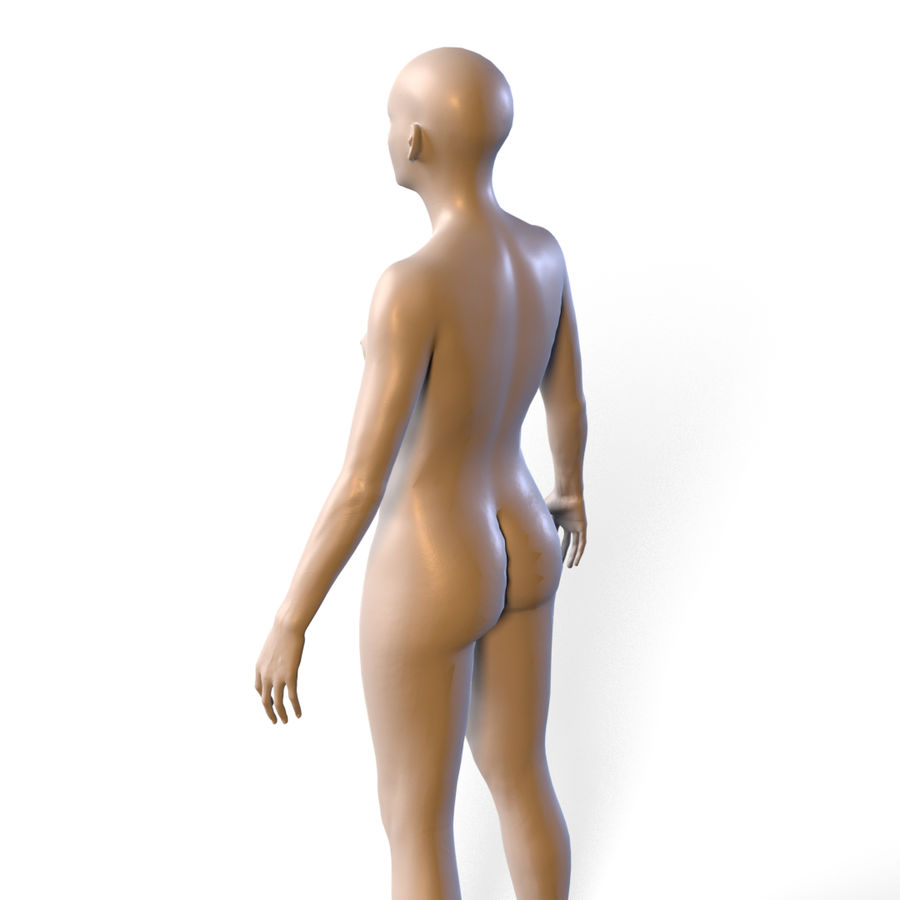 Basemesh corps femme royalty-free 3d model - Preview no. 14