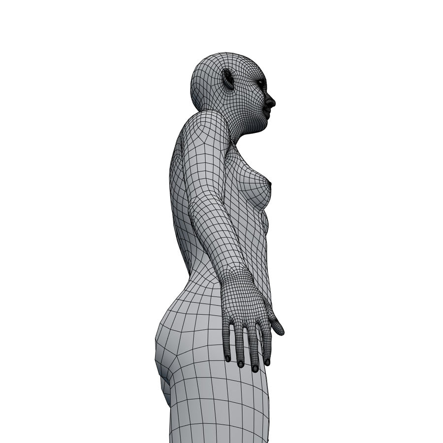 Basemesh corps femme royalty-free 3d model - Preview no. 31
