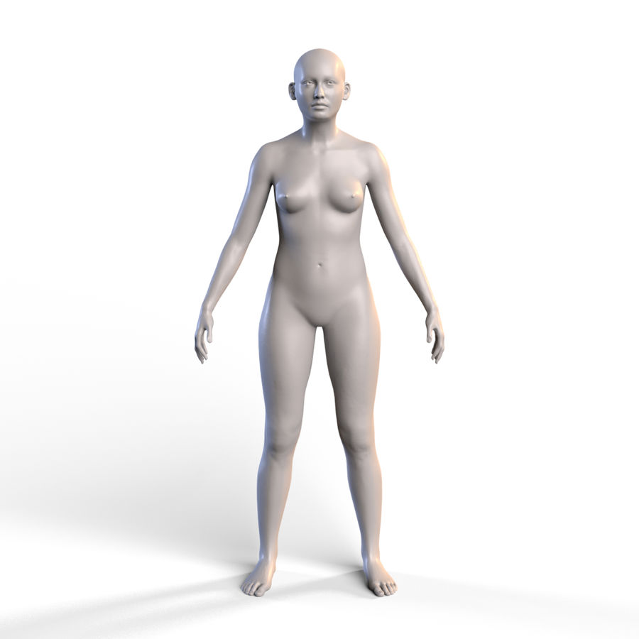 Basemesh corps femme royalty-free 3d model - Preview no. 2