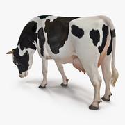 Postura de comer vaca lechera modelo 3d