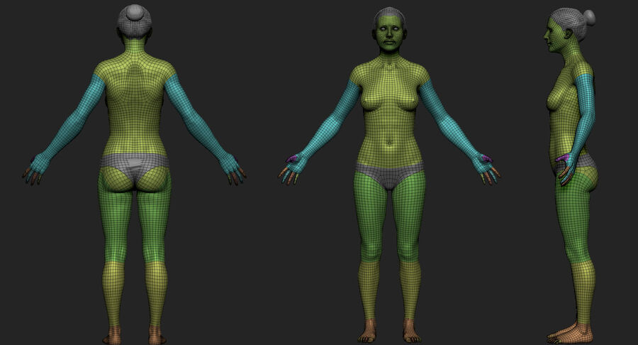Kadın Taban Mesh royalty-free 3d model - Preview no. 10