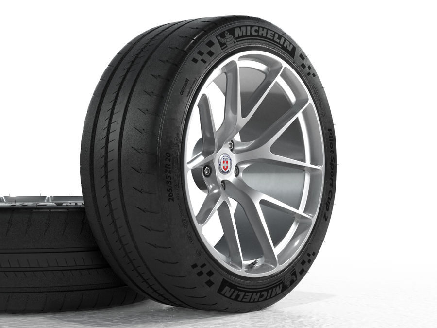 Michelin Pilot Sport Cup 2 royalty-free 3d model - Preview no. 10