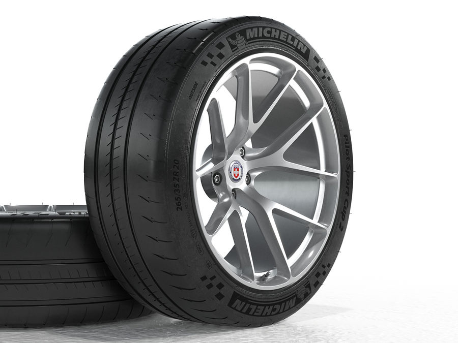 Michelin Pilot Sport Cup 2 royalty-free 3d model - Preview no. 8