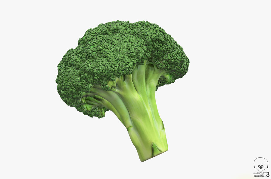 Broccoli High Poly PBR royalty-free 3d model - Preview no. 12