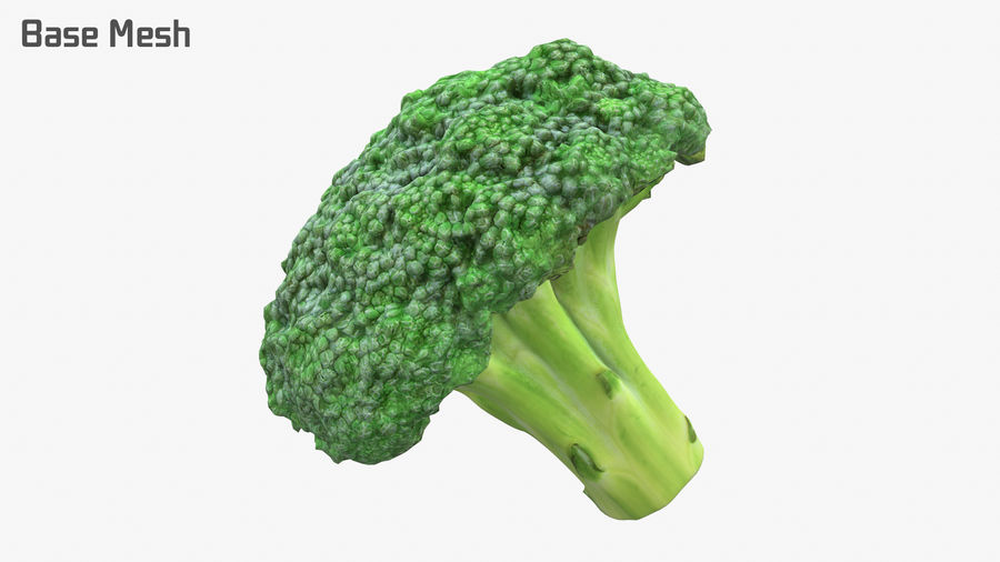 Broccoli High Poly PBR royalty-free 3d model - Preview no. 10