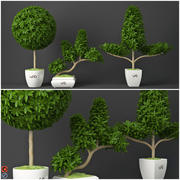 Houseplant 15 3d model