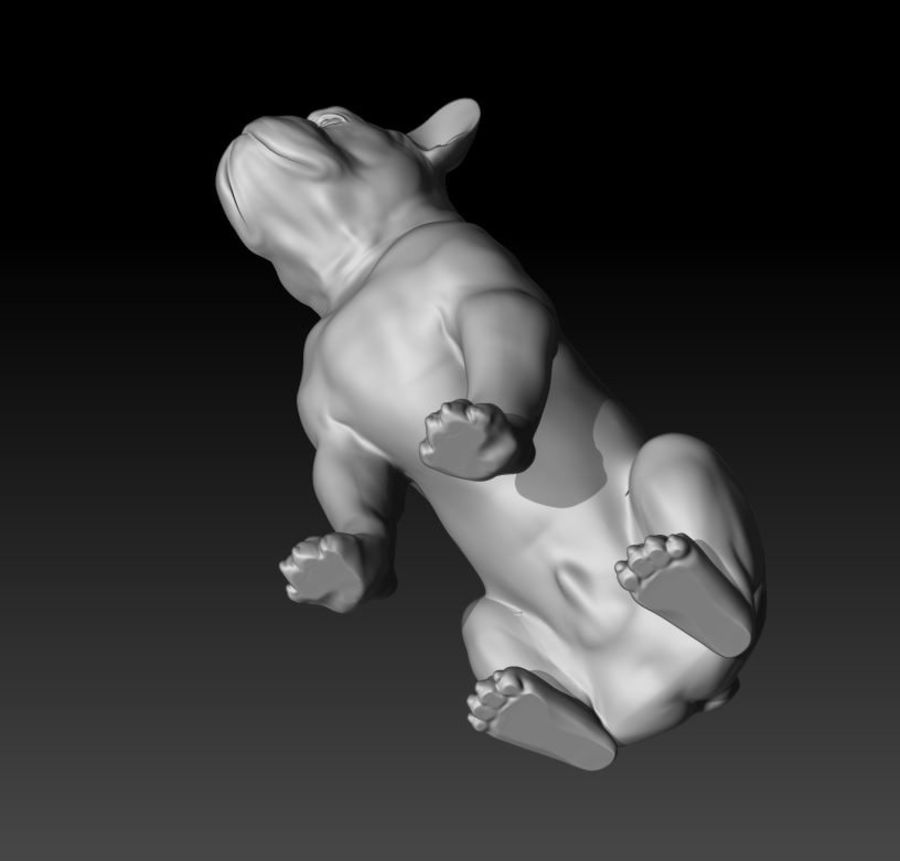 französische Bulldogge 3 royalty-free 3d model - Preview no. 4