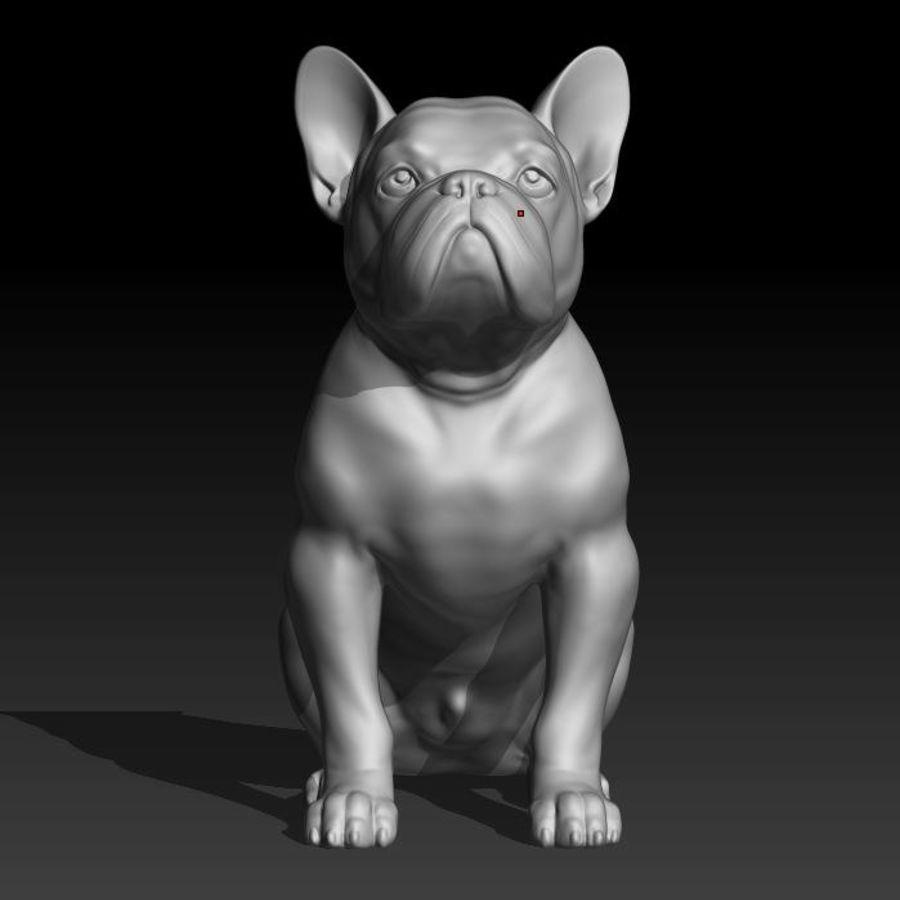 französische Bulldogge 3 royalty-free 3d model - Preview no. 5
