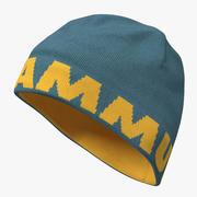 Erkek Kışlık Şapka 3d model