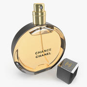 Chanel Chance Eau Parfum Vaporisateur Parfum Bottle 3d model