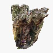 木の切り株05 3d model