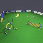 Dog Agility Uitrusting 3d model