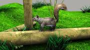 松鼠 3d model