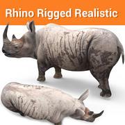 rhino rigged rhinoceros realistic dirty 3d model