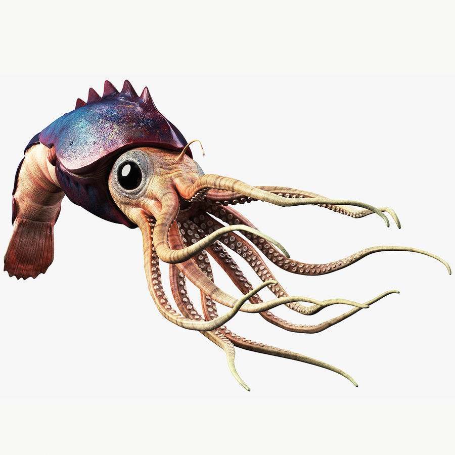 Squid Creature royalty-free 3d model - Preview no. 1