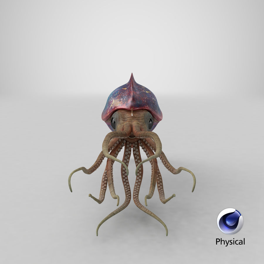 Squid Creature royalty-free 3d model - Preview no. 31