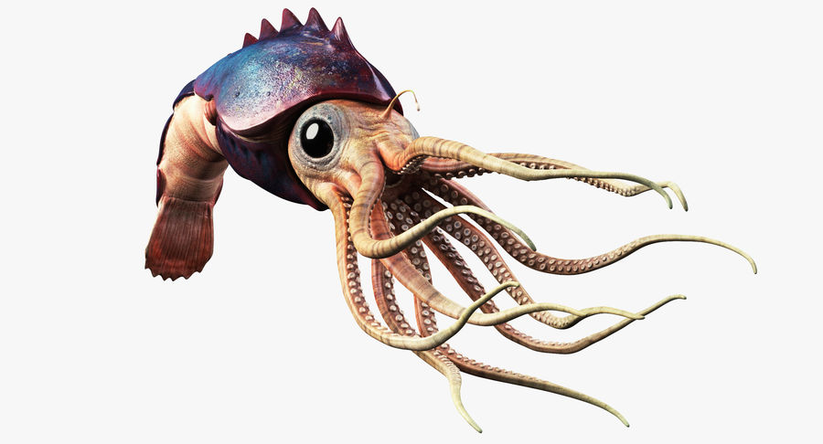 Squid Creature royalty-free 3d model - Preview no. 2