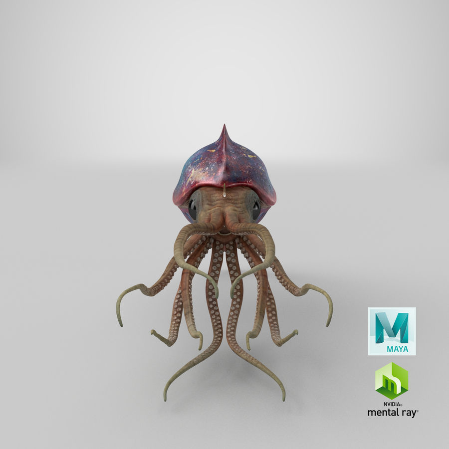 Squid Creature royalty-free 3d model - Preview no. 28
