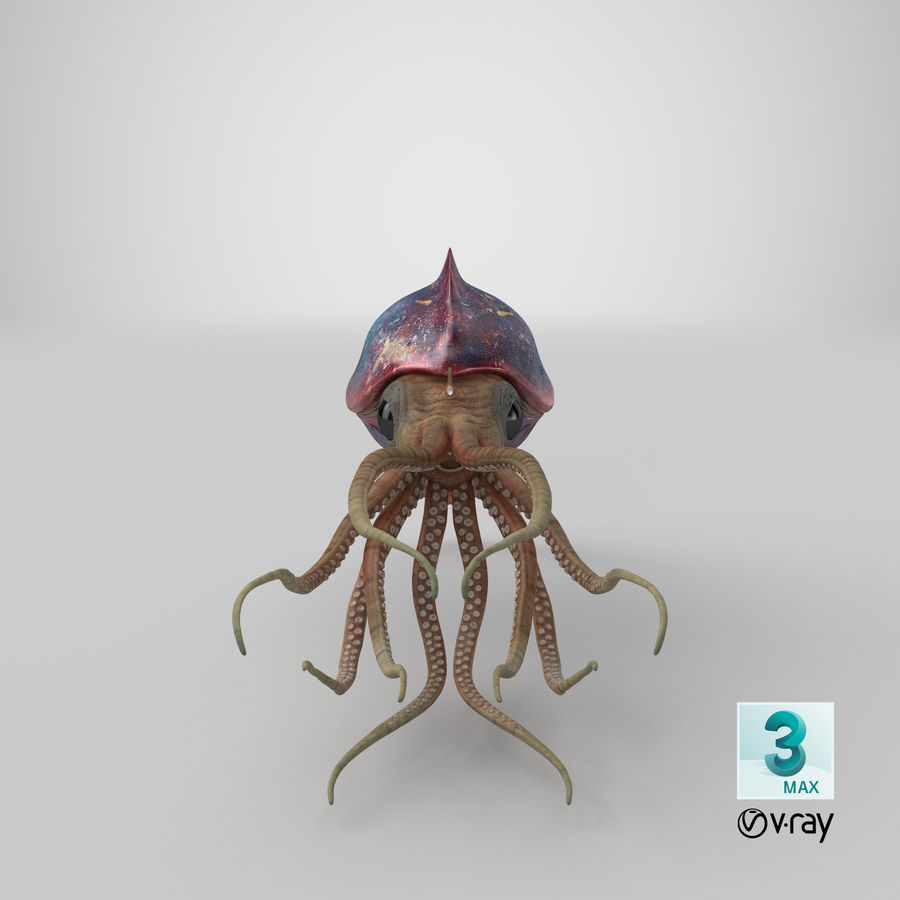 Squid Creature royalty-free 3d model - Preview no. 29