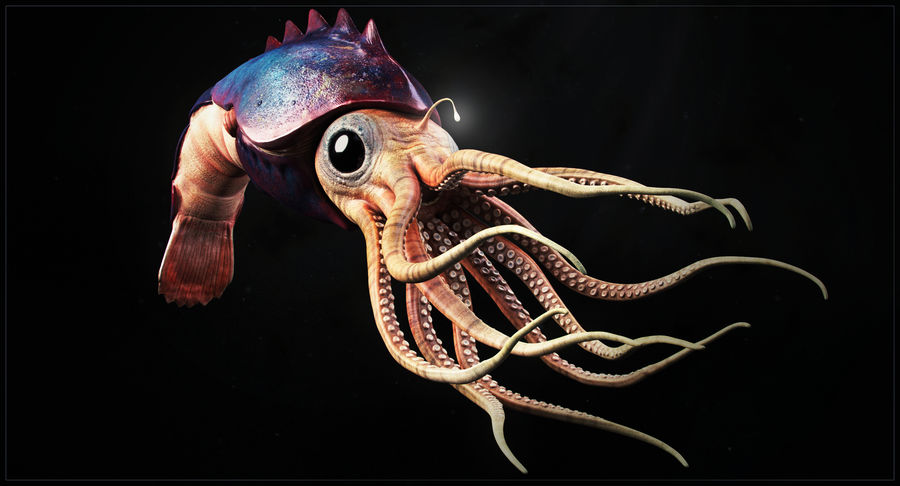 Squid Creature royalty-free 3d model - Preview no. 9
