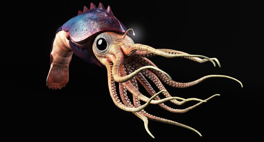 Squid Creature royalty-free 3d model - Preview no. 3
