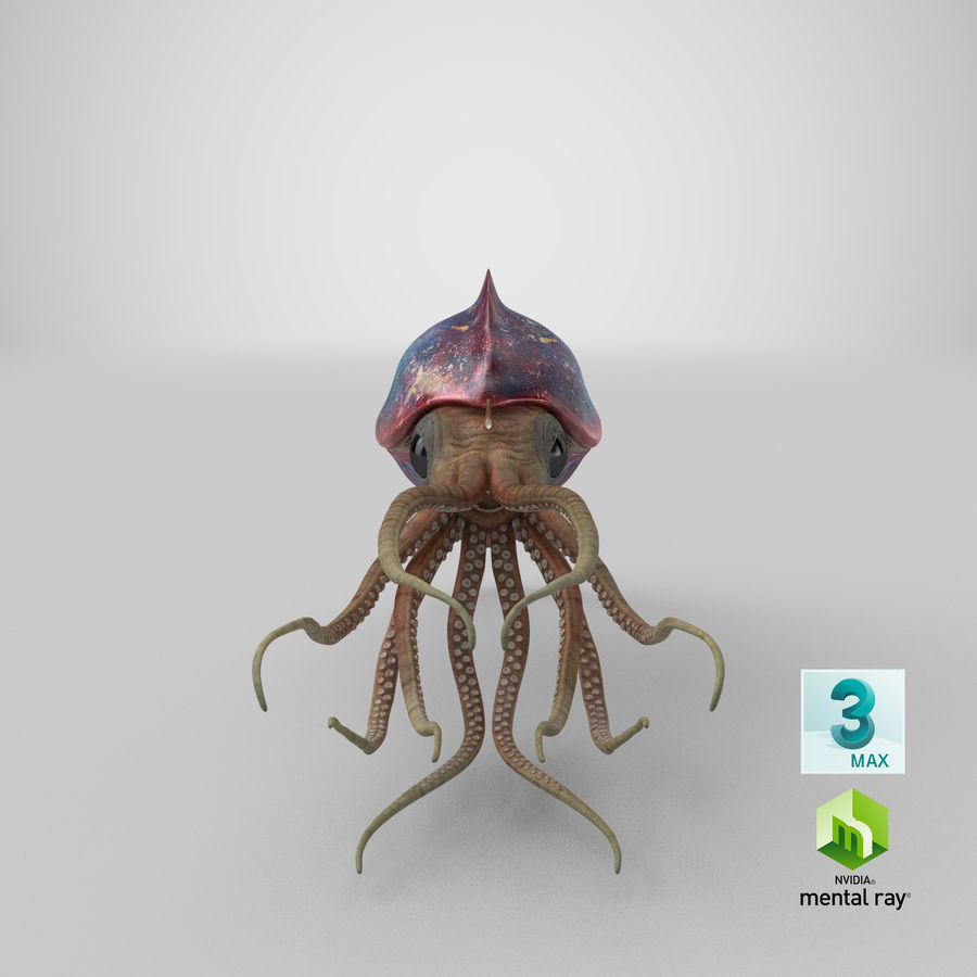 Squid Creature royalty-free 3d model - Preview no. 30