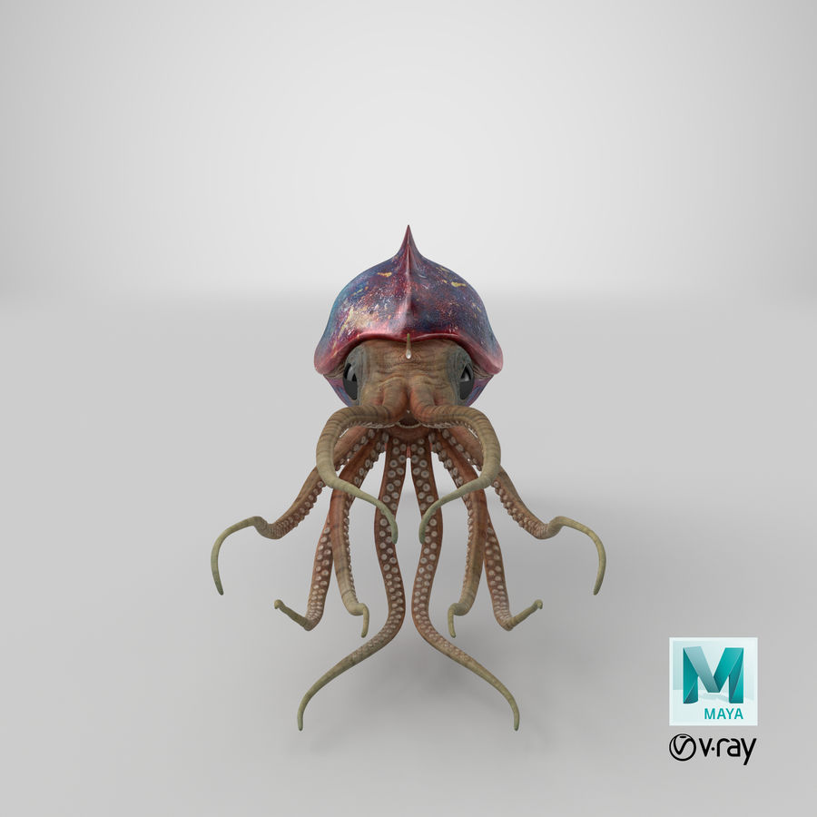 Squid Creature royalty-free 3d model - Preview no. 27