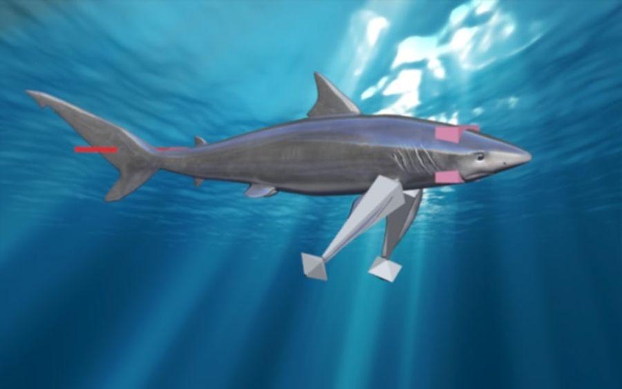 squalo truccato animato royalty-free 3d model - Preview no. 2