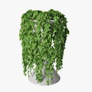 Ivy in pot 05 3d model