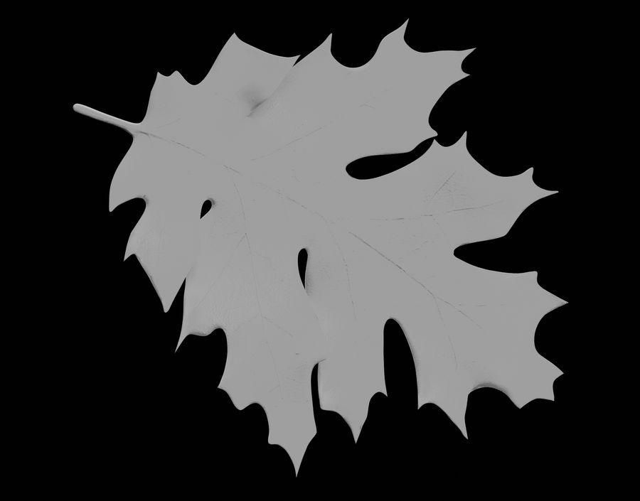 秋の葉 royalty-free 3d model - Preview no. 24