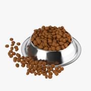 Stainless Steel Dog Bowl with food 3d model