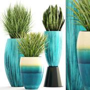 수집 식물 3d model