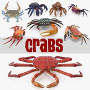 Crabs 3D模型集合3 3d model