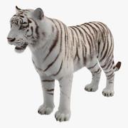 Tigre branco com modelo 3D de pele 3d model