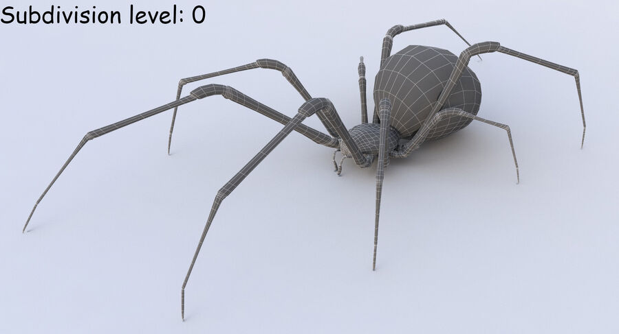 Black Widow Rigged royalty-free 3d model - Preview no. 19