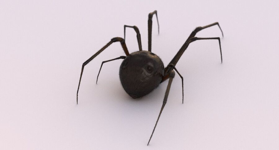 Black Widow Rigged royalty-free 3d model - Preview no. 12