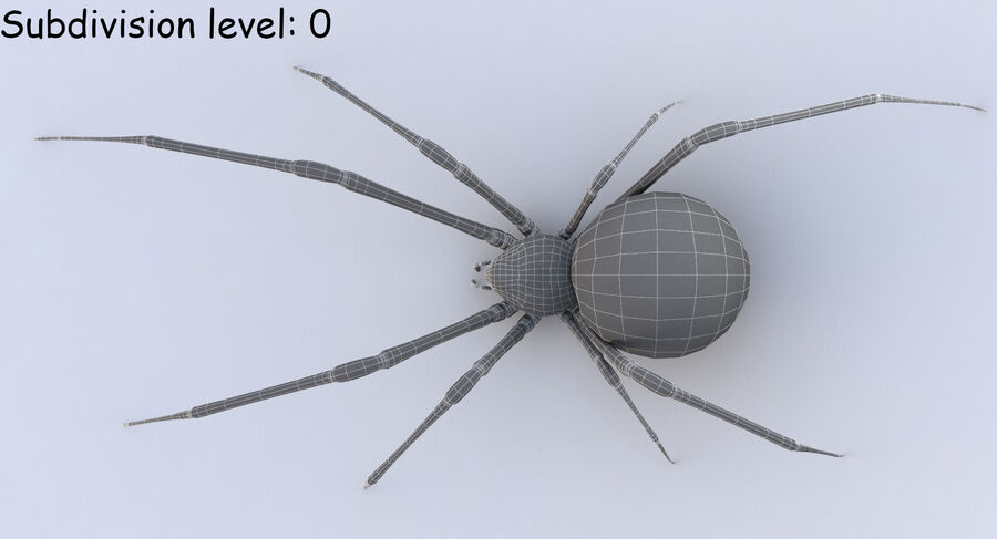 Black Widow Rigged royalty-free 3d model - Preview no. 21