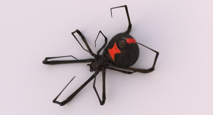 Black Widow Rigged royalty-free 3d model - Preview no. 9