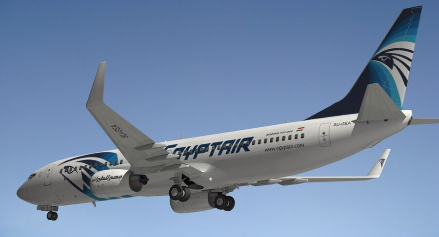 Boeing 737800 EgyptAir royalty-free modelo 3d - Preview no. 12