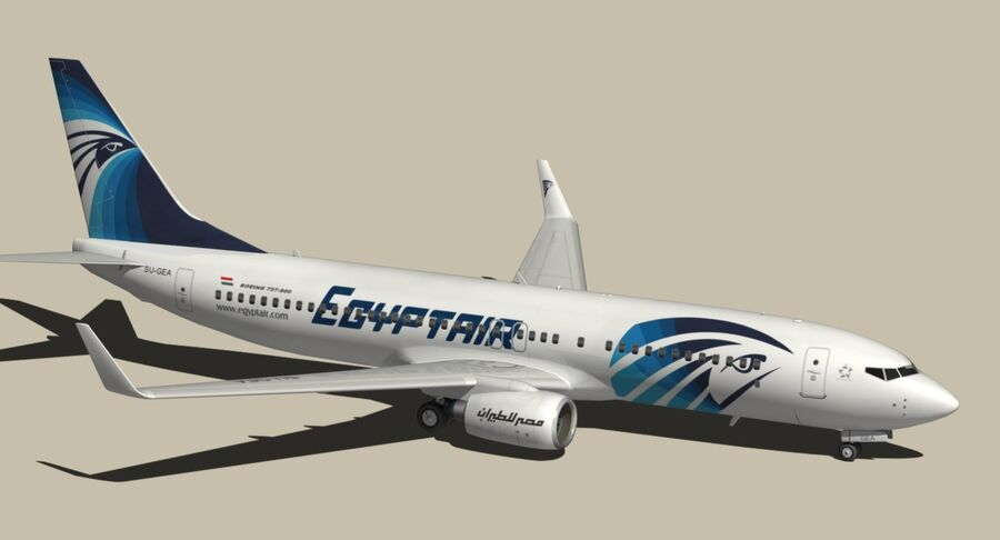 Boeing 737800 EgyptAir royalty-free modelo 3d - Preview no. 8