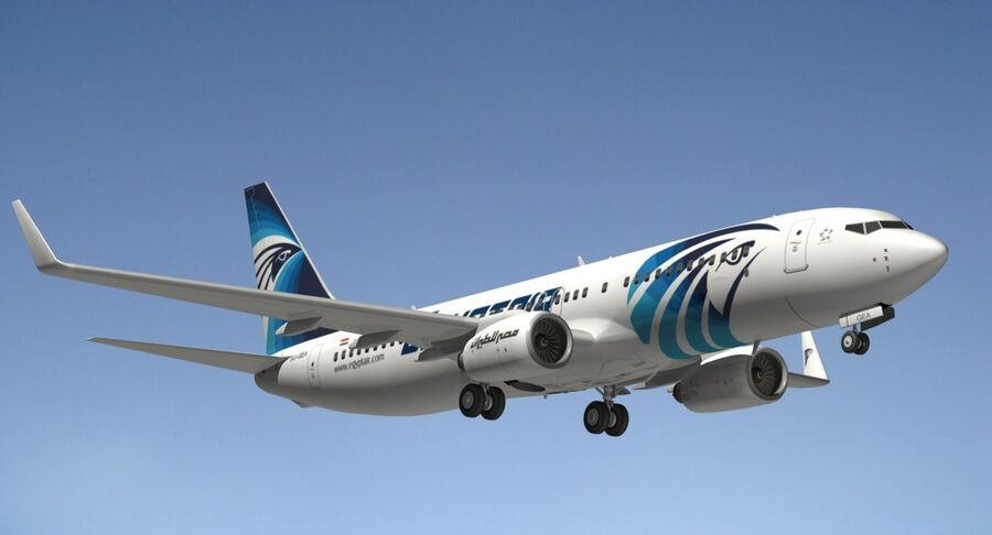 Boeing 737800 EgyptAir royalty-free modelo 3d - Preview no. 14