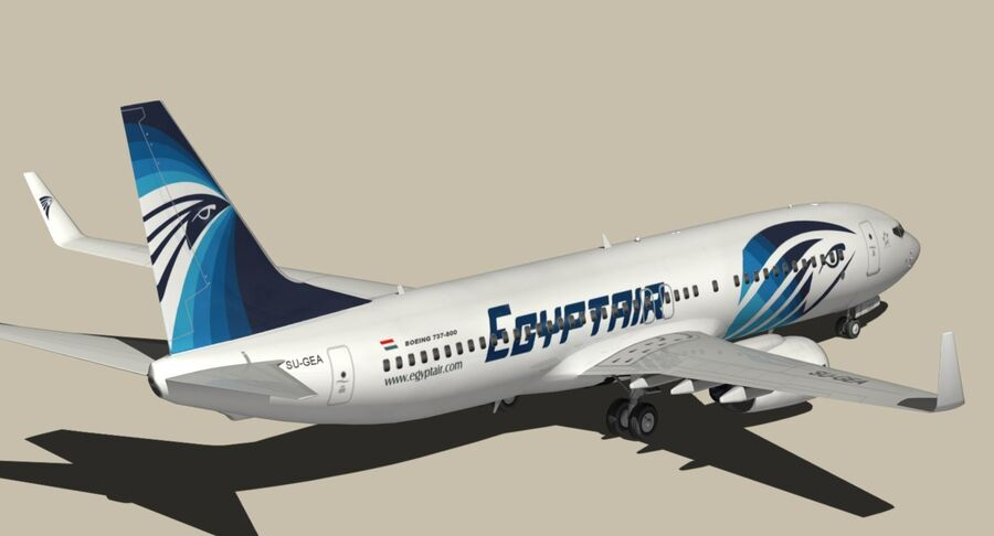 Boeing 737800 EgyptAir royalty-free modelo 3d - Preview no. 9