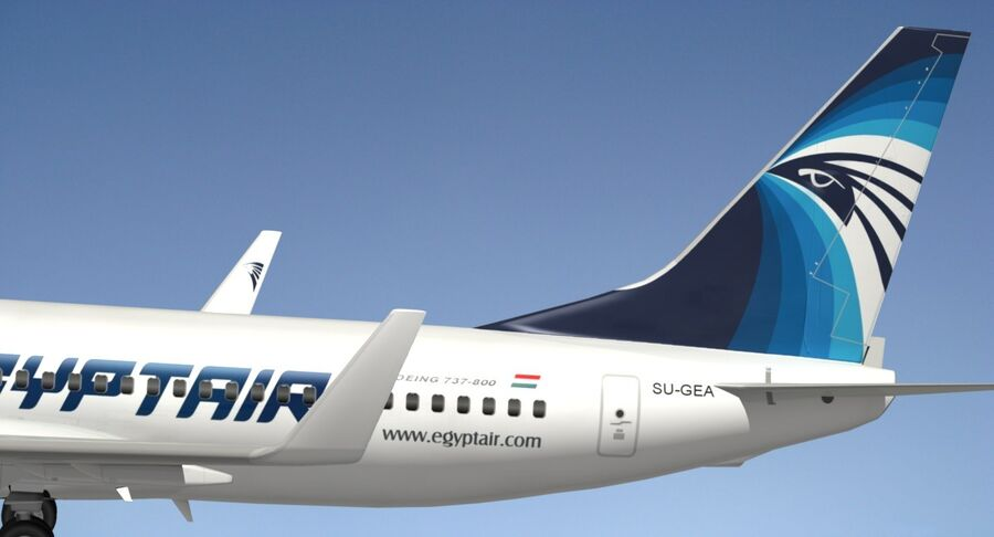 Boeing 737800 EgyptAir royalty-free modelo 3d - Preview no. 6