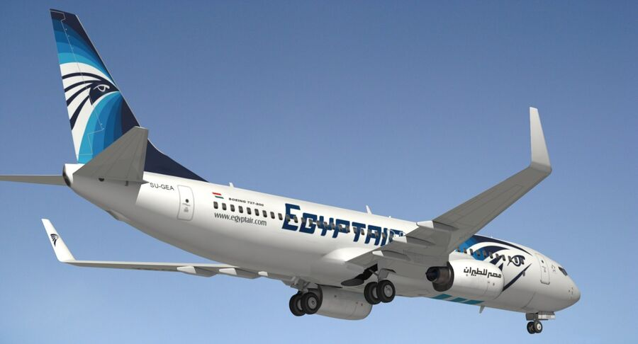Boeing 737800 EgyptAir royalty-free modelo 3d - Preview no. 13