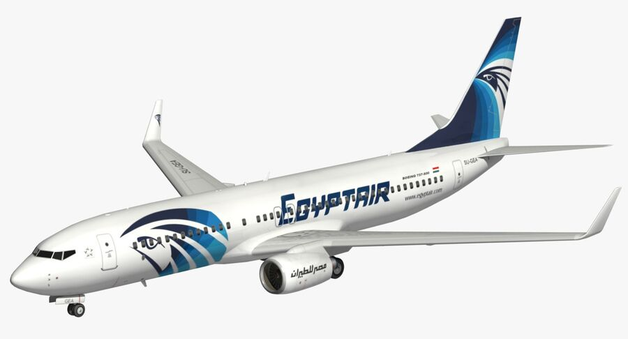 Boeing 737800 EgyptAir royalty-free modelo 3d - Preview no. 2